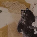 album di famiglia, laboratorio espressivo